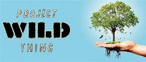 Project Wild Thing at the University of Chichester
